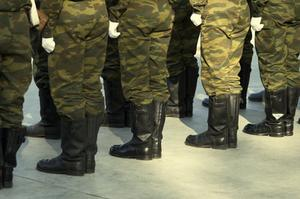 Quels sont les avantages d'une armée de métier ?