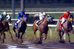 Comment faire pour une course de chevaux à l'aide d'un système de points de handicap