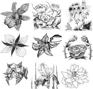 Comment ombre & ombre un dessin de fleur de Rose