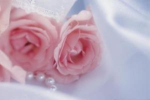 Comment décorer avec des pétales de fleurs de soie