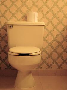 bride metal toilette. Black Bedroom Furniture Sets. Home Design Ideas