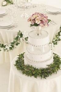 Comment trouver des Directions pour les décorations de gâteau de mariage