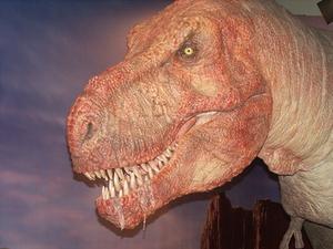 Idées de décoration de dinosaure