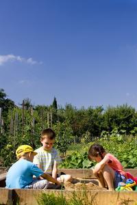 Activités alimentaire pour les enfants
