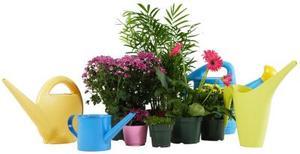Comment faire vos propres Pots planteur automatique d'arrosage