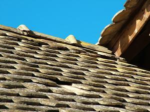Produits pour garder le moule & moisissures de se développer sur les bardeaux de toiture