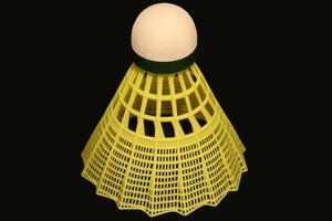 Compétences, exercices & stratégies pour le Badminton