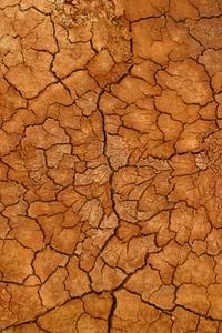 Les meilleurs Types de sol pour la rétention d'eau