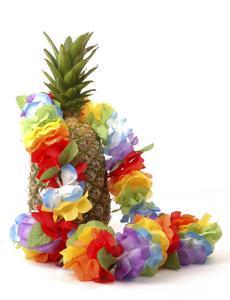 Conseils pour une soirée à thème hawaïen