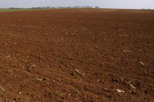 Ce qui est un engrais de phosphore élevé ?