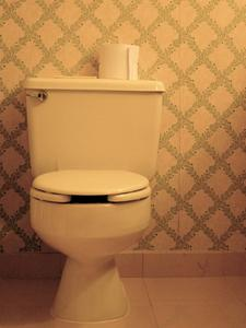 Probleme d eau dans la cuvette de wc for Changer une cuvette de wc