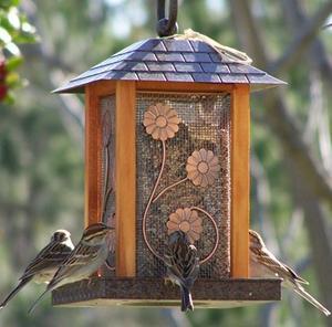 piege a oiseaux facile a construire. Black Bedroom Furniture Sets. Home Design Ideas