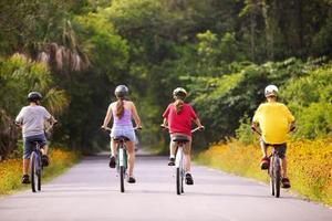 Remorques de vélo moins chers