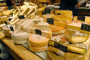 Quel Type de micro-organisme est utilisé pour fabriquer le fromage ?