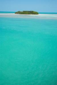 Comment faire une île tropicale pour un projet scolaire