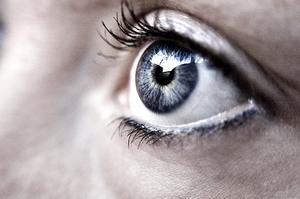 Maladie de le œil causée par les oiseaux