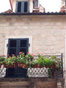 Fleurs pour balcon