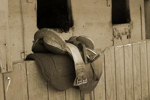 Comment mesurer une selle de cheval anglais