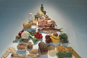 Quelles sont les portions quotidiennes pour les 4 groupes alimentaires ?