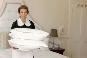 Comment rajeunir et nettoyer un oreiller de plume