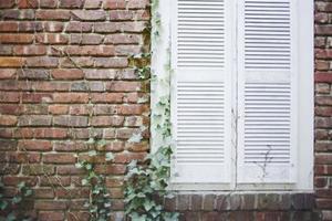 La meilleure façon de nettoyer les vieilles briques