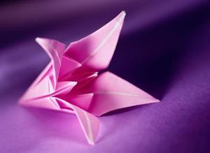Comment plier une tige Origami